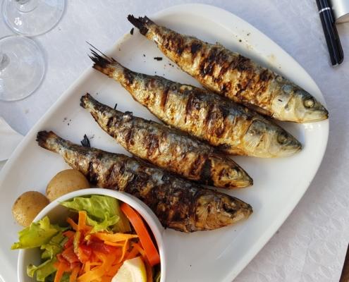 Venta de pescado en Sevilla